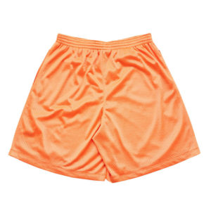 USED FUTURE Mesh Short