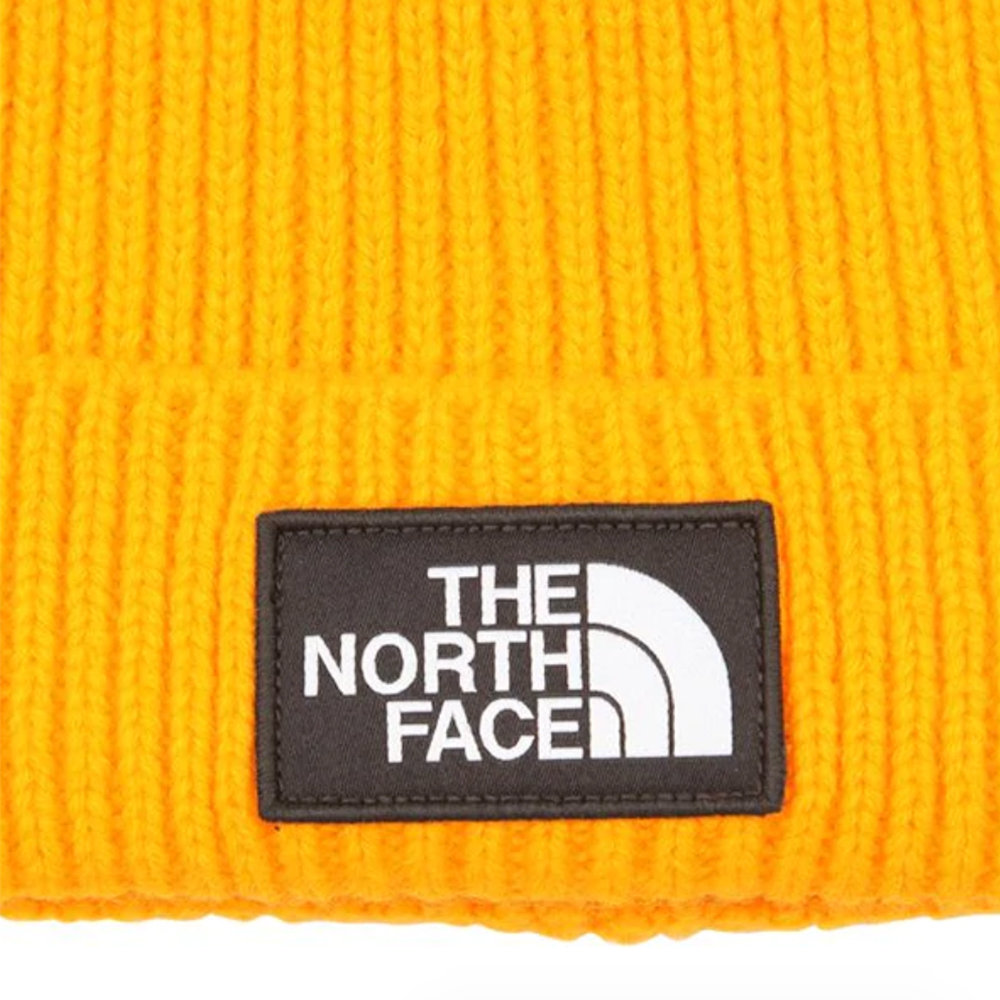 THE NORTH FACE TNF Logo Box Cuffed Beanie